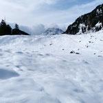 Nelle vicinanze dell'Alp Durnan