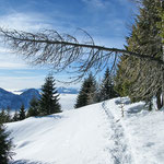Sentiero Alpe di Gesero - Alpe Croveggia
