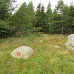 Il sentiero per il Gaggio che parte a monte delle cascine è marcato in rosso