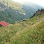 Carnalta 1212 m