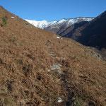 Sentiero per l'Alpe Coransù