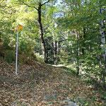 Sentiero Costa - Lionza