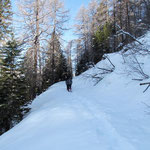 Sentiero Alpe Cadonigo - Fisgióch