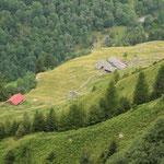 Carnalta dal sentiero che sale all'Alp de Calvaresc