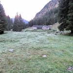 Alp de Val d'Arbola 1262 m