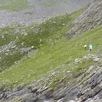 Sentiero Alp de Quarnei - Forcola