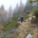 Sentiero Alpe di Motto - Brogoldone