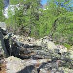 Sentiero per il Lago di Prato