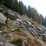 Sentiero Brogoldone - Alp de Martum