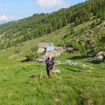 Salita all'Alpe di Gesero