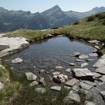 Alp de Naucal