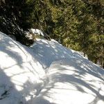 Sentiero Alp de Martum - Prepiantò Alt