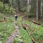 Sentiero Gamba in fora - Montogn