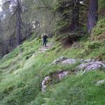 Sentiero per l'Alpe della Bolla