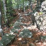 Sentiero per i Monti di Loga