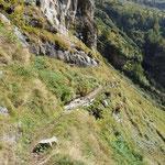 Discesa nella Val Pincascia