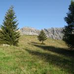 Alp de Cascinarsa 1747 m