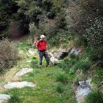 Sentiero Domas - Peurett