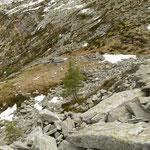 Discesa dal Pizzo d'Orgnana ... ritroviamo il sentiero a 1800 m