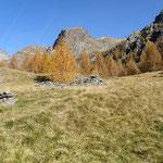 Alp de Quarnei 1753 m