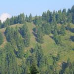 Alpe d'Urno