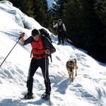 Sentiero Alp de Martum - Capanna Brogoldone