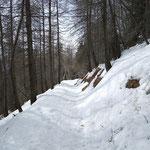 Sentiero Cimetta - Cardada