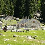 Alp del Lago 1279 m