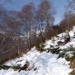 Sentiero Fontai - Bassa di Bietri