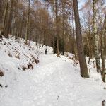 Salita al Passo di Monte Faeta - Forcola