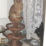 Pierroth 3 Jahre und 3 Monate alt auf Obstkorb....