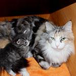 Olympia  5 Jahre und 1 Monate alt  mit Töchterchen Diana 23 Tage alt