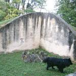 Ausflug im Burgenland