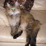 Penelope 14 Monate alt