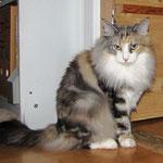 Olympia  4 Jahre  und 5 Monate alt
