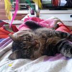 Berenike 10 Monate alt