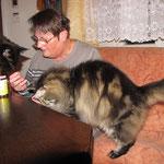 Cosmo 9 Jahre  und 7 Monate alt mit Cooniekater Easy und Gerlinde