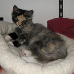 Frøya 4 Monate alt