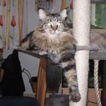 Delilah 1 Jahr und 10 Monate alt