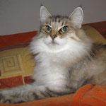 Amelie 9 Jahre und 1 Monate alt