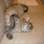 Penelope 13 Monate alt