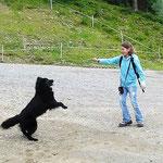 Eurasiertreffen in Osttirol