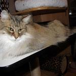 Amelie 11 Jahre und 7 Monate alt