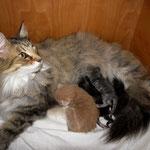 Amelie 8 Jahre und 9 Monate alt mit ihren R-Babies 1 Tag alt und Que Pasa 9 Tage alt