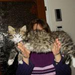 Camillo 10 Wochen alt