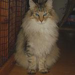 Amelie 2 Jahre und 10 Monate alt