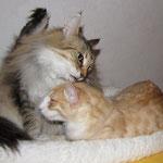 Tristan 24 Wochen alt mit Oma Amelie