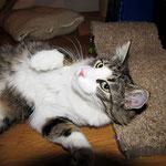 Violetta 13,5 Monate alt