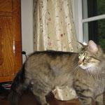 Joannis  1 Jahr und 4 Monate alt