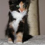Leticia 3 Monate alt